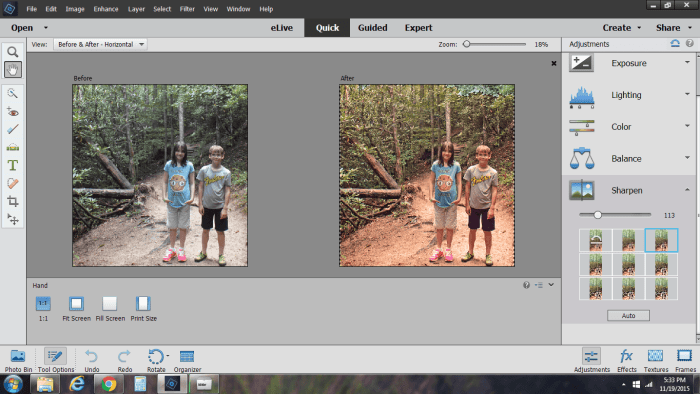 Adobe Photoshop Elements 14 before and after