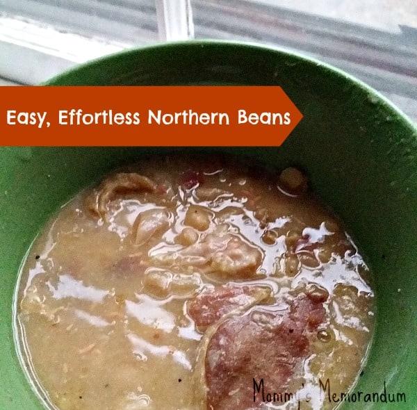 Easy, Effortless Northern Bean Recipe