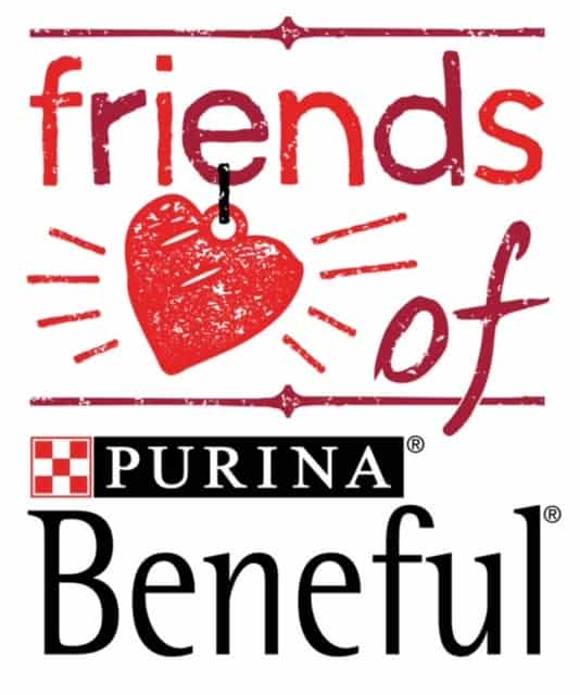 friends with beneful