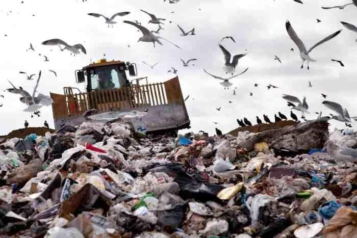 Rubbish Removal Quagmire In Russia