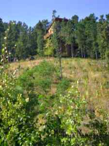 Edelweiss Mountain Lodging–A HOME in the Black Hills When You Want to Get Away!
