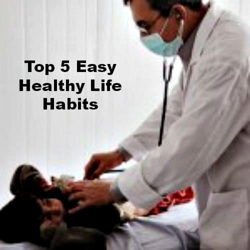 Top 5 Easy Healthy Life Habits Mommy's Memorandum