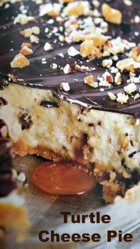 Turtle Cheese Pie #recipe