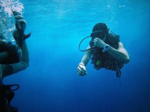 Vacation Planning: Tips to Find the Right Dive Watch for Your Caribbean Getaway