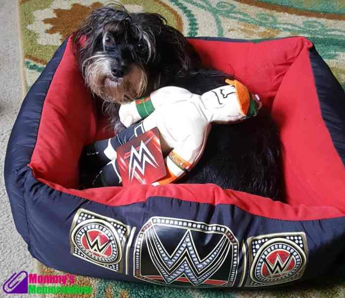 bailey mae in wwe pet pet bed with john cena pet doll