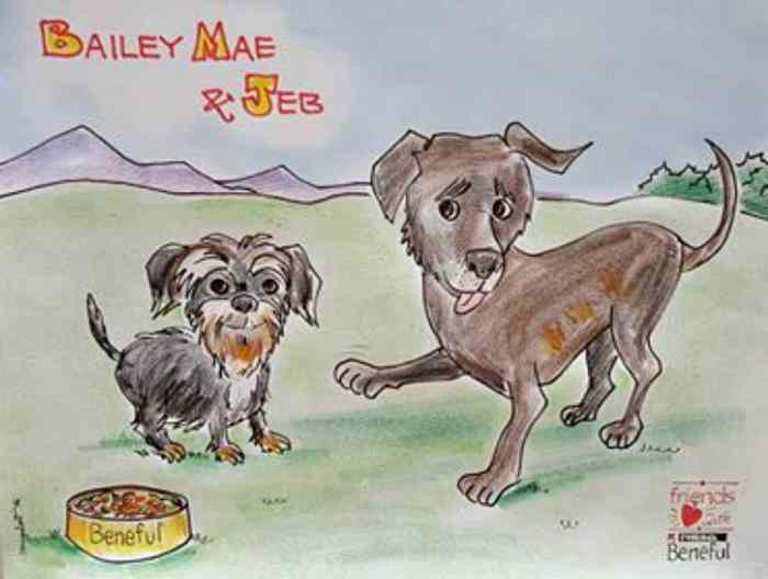 bailey mae and jeb