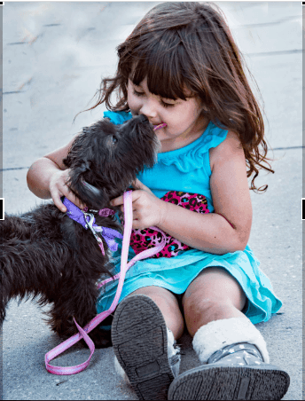 How To Puppy Train Your Small Children