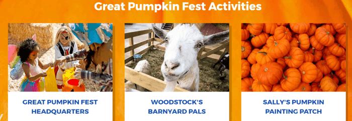 great pumpkin fest activities
