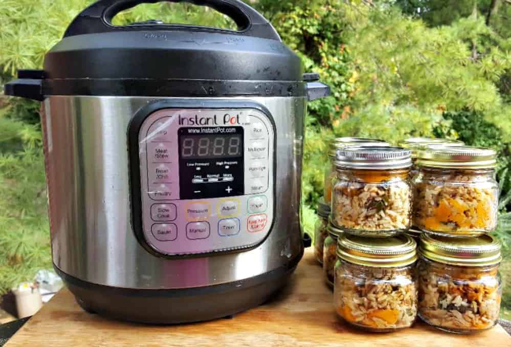 instant pot dog food recipe