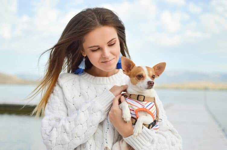 how to be the best puppy parent you can be