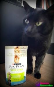 Purina Pro Plan Cat Treats with the Texture and Taste Cats Crave