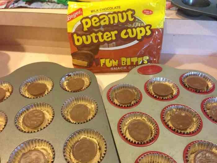 slutty brownies boyer brand peanut butter cups