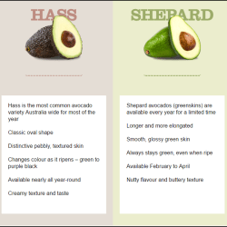 Varieties Hass vs Shepard