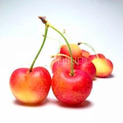 Chilean Rainier Cherry