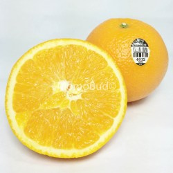 Sunkist Barnfield Navel Orange (half)