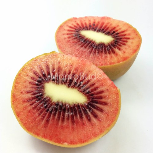 Red Kiwi cross section