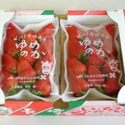 Japanese Yumenoka Ichigo Box