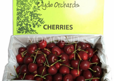 Clyde Orchards Staccato Cherry
