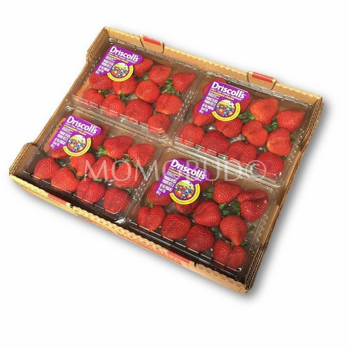 Driscoll's Long Stem Strawberry Tray