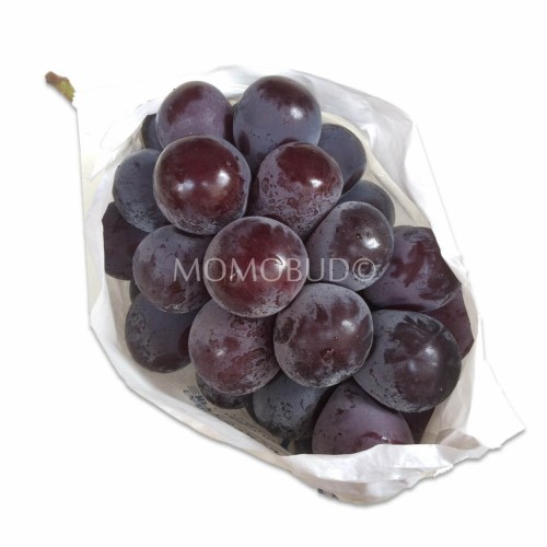 Japanese New Pione Grapes