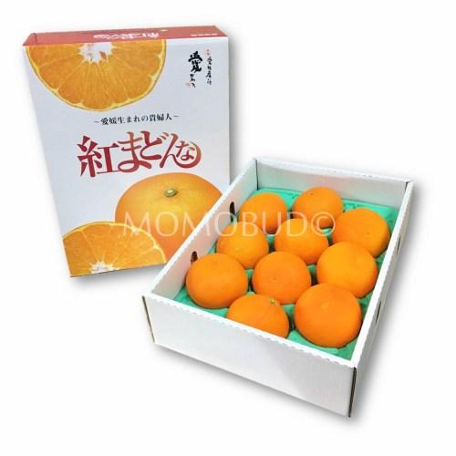Japanese Akamadonna Gift Set