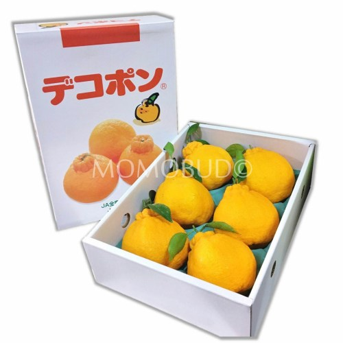 Japanese Depokon Gift Set (6pcs)