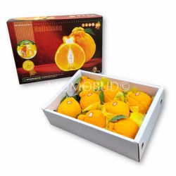 Jeju Hallabong Orange Gift Box 3kg