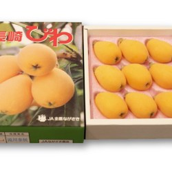 Nagasaki Biwa Gift Box