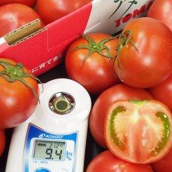 Amela Tomato sweetness