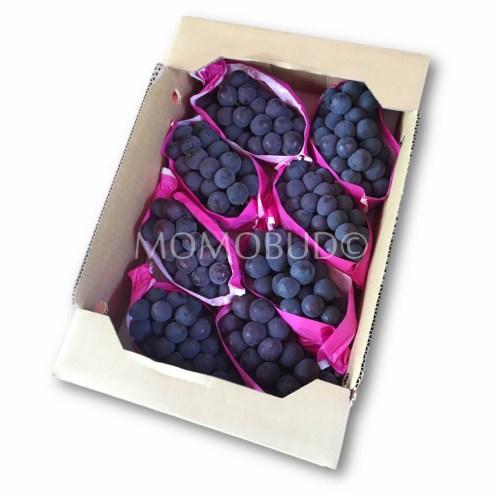Japanese Kyoho Seedless Grapes Box