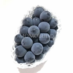 Japanese Pione Seedless Grapes