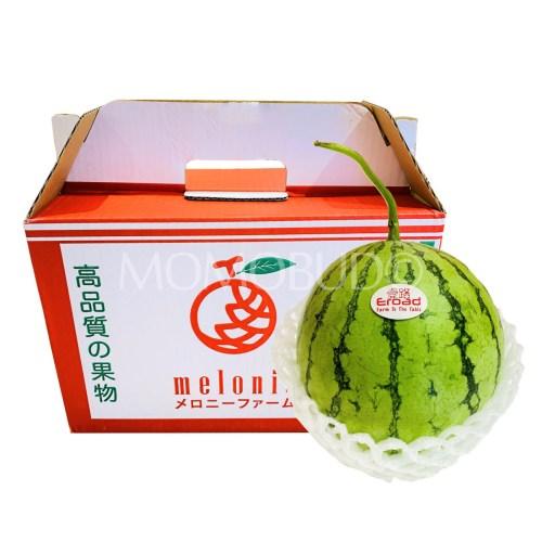 Malaysia Melonie Watermelon Box