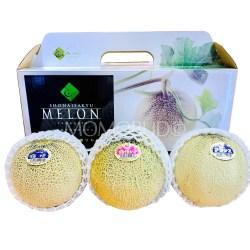 Shonaisakyu Tsuruoka Zanmai Melon 3-IN-1 Gift Box (3kg)