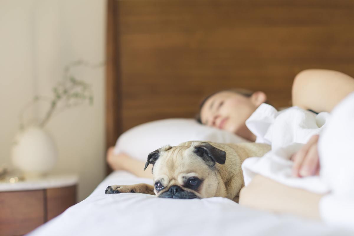 Tips en feitjes over vermoeidheid – Voor alle vermoeide moeders!