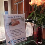Graco Little Lounger™  ~ A Must Have For Your Little Bundle!