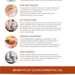 Clove Bud Essential Oil The Complete Uses And Benefits Guide