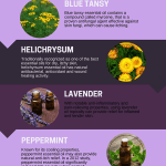 Stop That Itch 10 Best Essential Oils For Itching Recipes Included