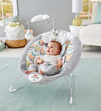 fisherprice bouncer deluxe