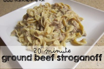 20 minute ground beef stroganoff recipe moms bistro