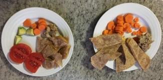 Kids plates leftover chicken + quesadillas