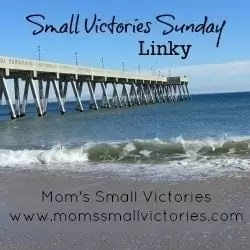 small-victories-sunday-linky-button