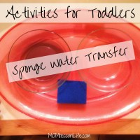 Activities for Toddlers -- Sponge Water Transfer