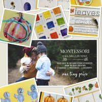 Montessori Fall Mega Bundle -- Limited Time Only!!!