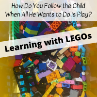 How Do You Follow the Child When All He Wants to Do is Play?  Learning with LEGOs