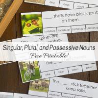 Singular, Plural, and Possessive Nouns -- Free Printable!