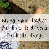Slow Down! Giving Your Toddler the Time to Discover the Little Things