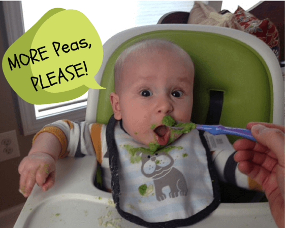 Baby Feeding Tips, What and How Much