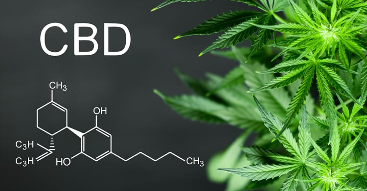 Health benefits of CBD products and Where to Buy