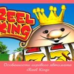Особенности игрового автомата «Reel King»