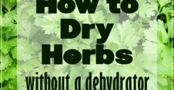 How to Dry Herbs without a Dehydrator